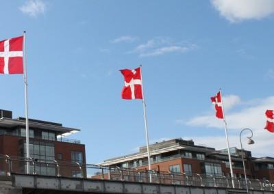 Flag_på_kajen_2015-001