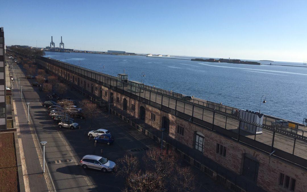Ingen eller kun få krydstogtskibe til København i år